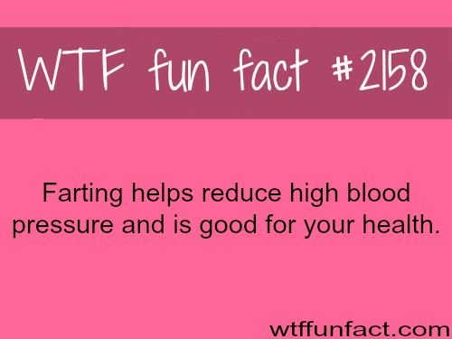 "Ah-Ha! ...One reason some people have high blood pressure, and poor health... by NOT, ""Passing Gas""....I Thank You, & Appreciate your efforts! - WTF? fun facts"