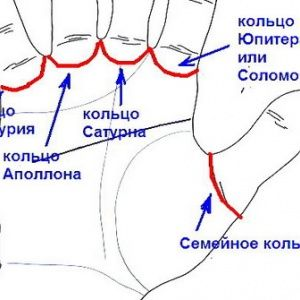 Соломоново кольцо на лад…