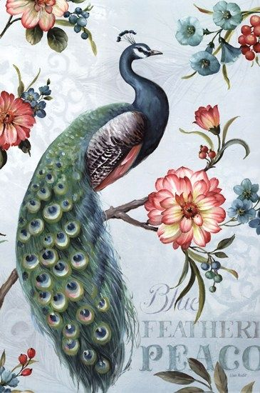 Blue Feathered Peacock I by Lisa Audit art print