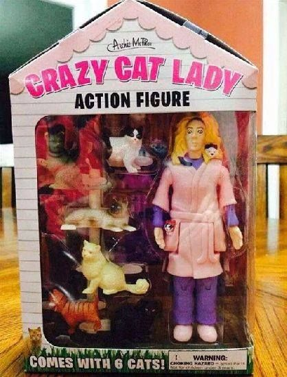It looks like things have taken a downward turn for Barbie since the Toy Story movies finished... #Barbie #cats #NEFollowers