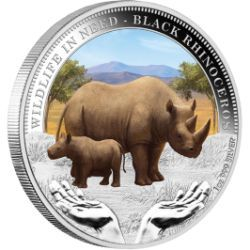 Wildlife in Need - Black Rhinoceros 2012 1oz Silver Proof Coin | The Perth Mint