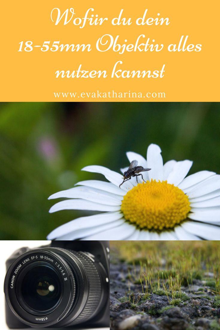 Viele Fotografen schimpfen gerne über das 18-55mm Kit-Objektiv. Ich möchte dir stattdessen erzählen, wie du alles aus dem Objektiv rausholen kannst und da durch erstmal viel Geld sparen kannst.