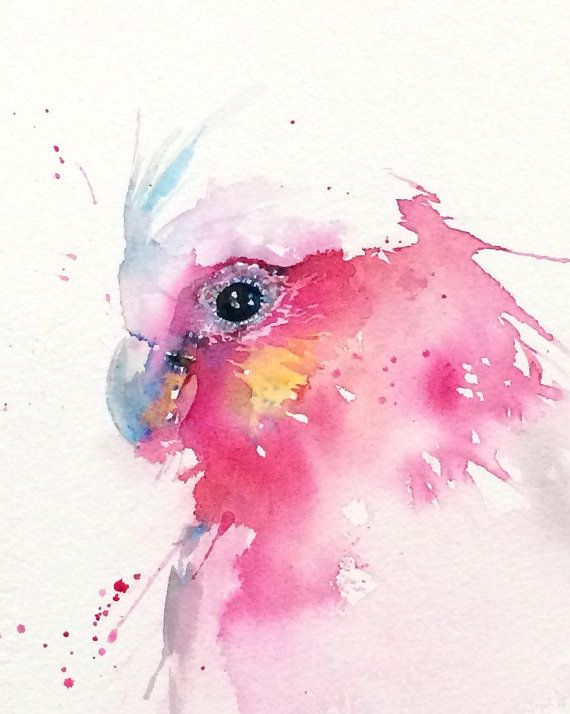 Items similar to Galah illustration PRINT from my Australian Wildlife watercolour painting on Etsy