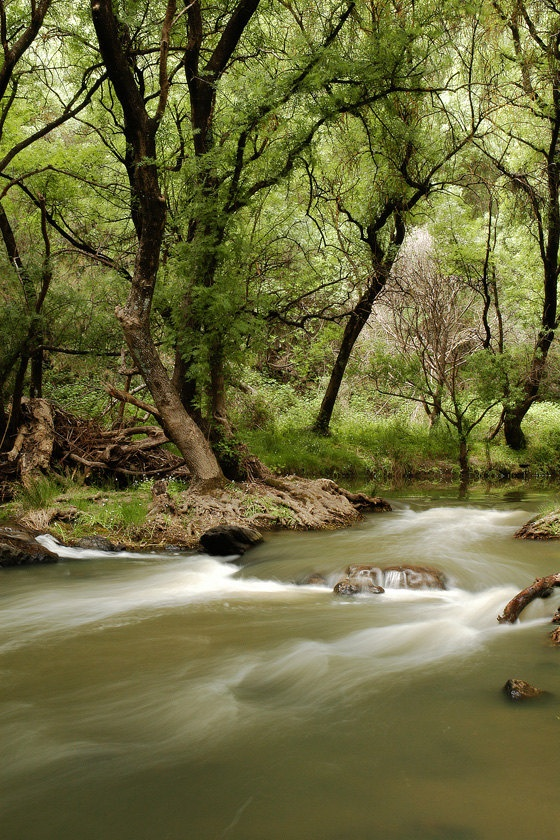 Torrens River in the Adelaide Hills by Colourscape
