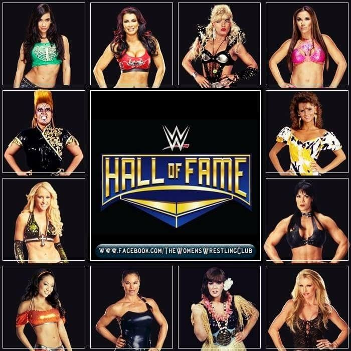 Who would you want to go into the 2018 Hall of Fame AJ Lee Victoria Luna Vachon Mickie James Miss Elizabeth Chyna Sable Ivory Gail Kim Michelle McCool & Bull Nakano