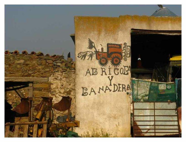 Near Salamanca