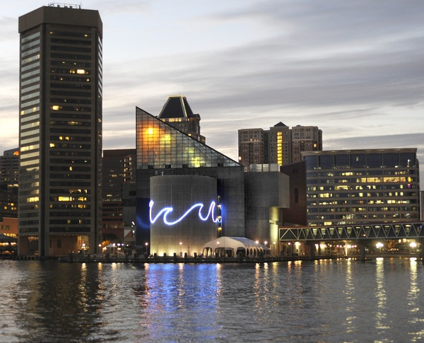 82 Best Images About National Aquarium In Baltimore On