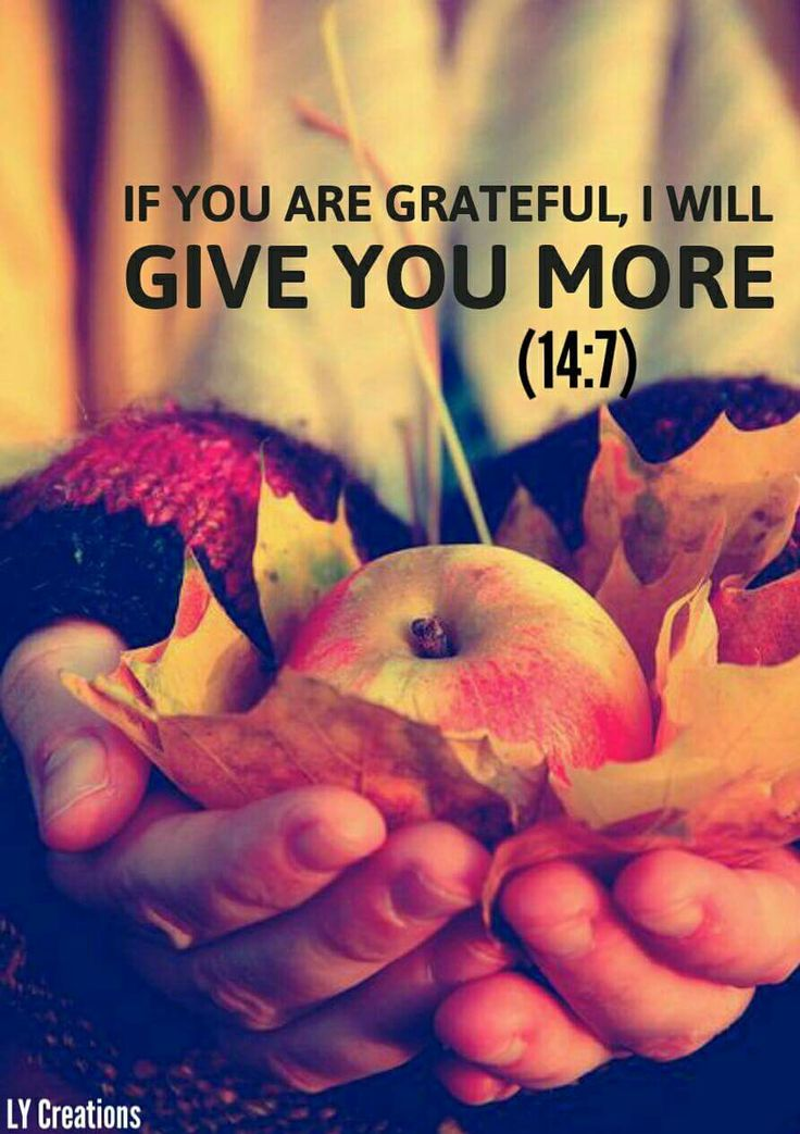 If you are grateful I will give you more ...