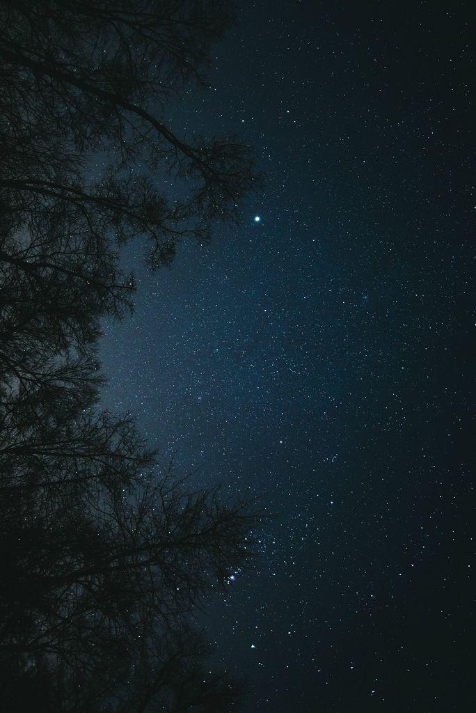 That liquid,  pure, starry sky ♥ looks like diamonds softly shinning on the water