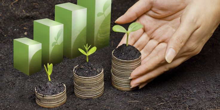 Belajar Investasi Lewat Reksa Dana BCA