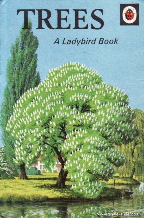 LadyBird Vintage Trees Book
