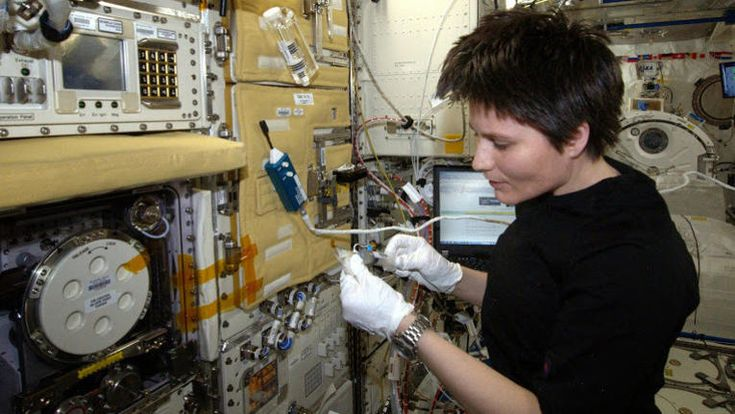 Worms hitch a ride aboard the ISS