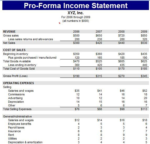 Pro Forma Financial Statement Template
