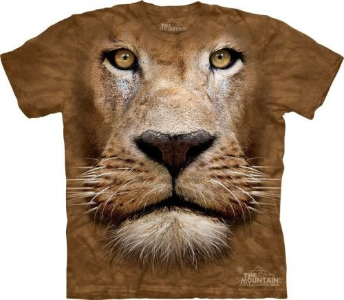 Marcelo Burlon or Givenchy? does it matter?   those tshirts are just cool!!