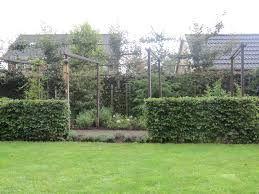 Afbeeldingsresultaat voor beukenhaag in tuin