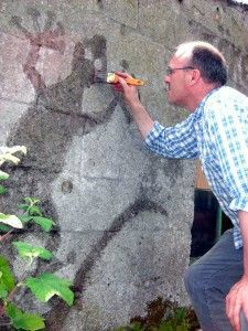 Man painting moss onto a wall in the shape of a lizard