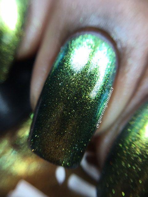 Mejores 108 imágenes de Chameleon Color Shifting en Pinterest ...