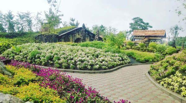 Salah satu tempat wisata di Lembang yang paling populer dan sering dikunjungi para wisatawan adalah Farmhouse Lembang. Tempat wisata yang satu ini sangat cocok dikunjungi bersama dengan pacar, teman ataupun keluarga
