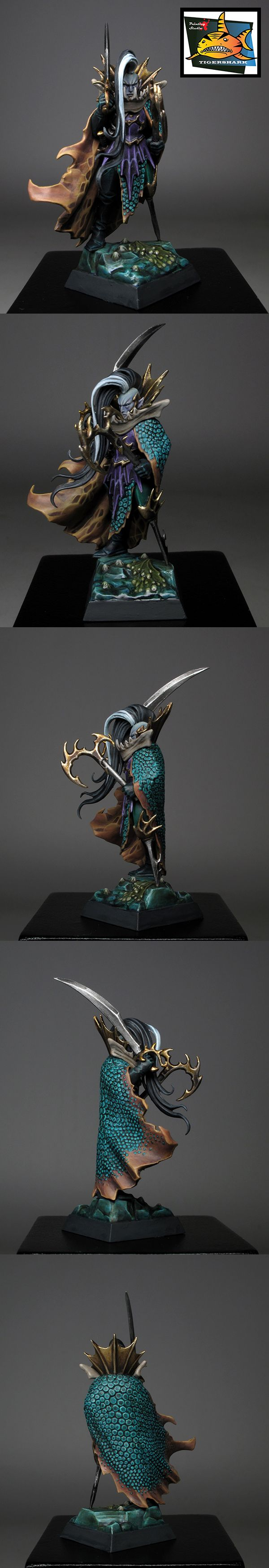 Dark Elves Fleetmaster - Tigershark Infinite