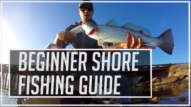 Beginner Saltwater Shore Fishing Guide - With Lures - YouTube