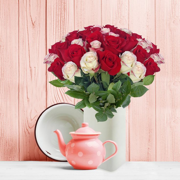 #White,#Red,#roses, #Promo, #Flowers #wedding, #events, #bouquets, #arrangement, #party, #fall, #winter, #summer, #spring, #harvest, #Christmas, #garden, #centerpieces, #autumn, #tropical,#recipes,#decor,#bridal,#floral,#DIY,#gift,,#online,#valentines,#bride,#floral,#ideas,#blooms,#anniversary, #mothers #day, #baby, ,#gardening, ,#plants, #holidays, ,#fashion, #, #home, #decor, #USA, #Costco, #art, #Texas ,#design, #Sams ,#bulk, #amazon, #style, #shopping