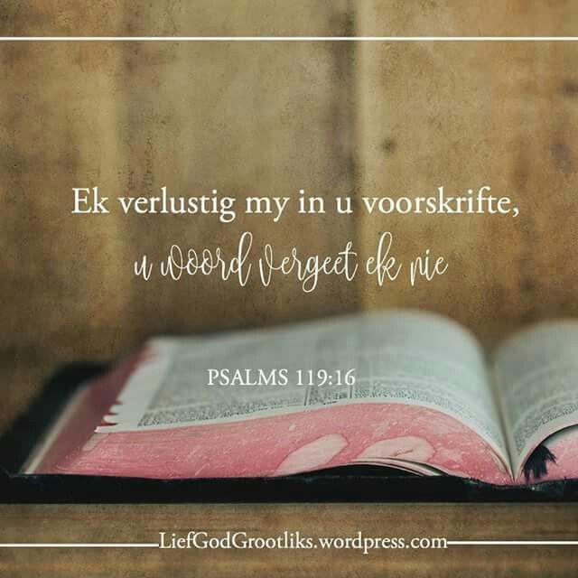 PSALMS 119:16 Ek verlustig my in u voorskrifte, u woord vergeet ek nie. Ons moet elke dag begin met God se Woord