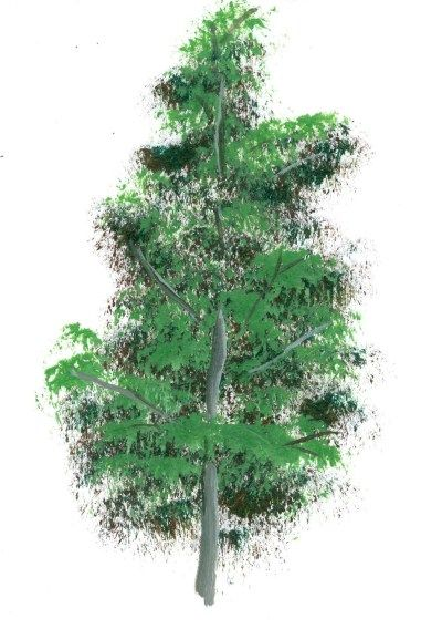 Painting Leaves in Acrylic | how-to-paint-a-tree-2.jpg