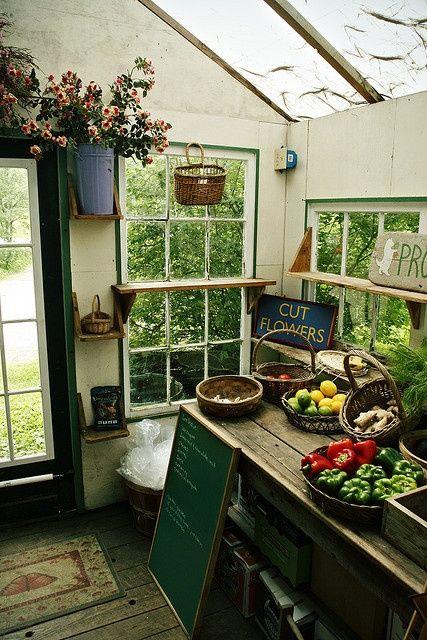 Garden Sheds Inside 25+ best shed shelving ideas on pinterest | tool shed organizing