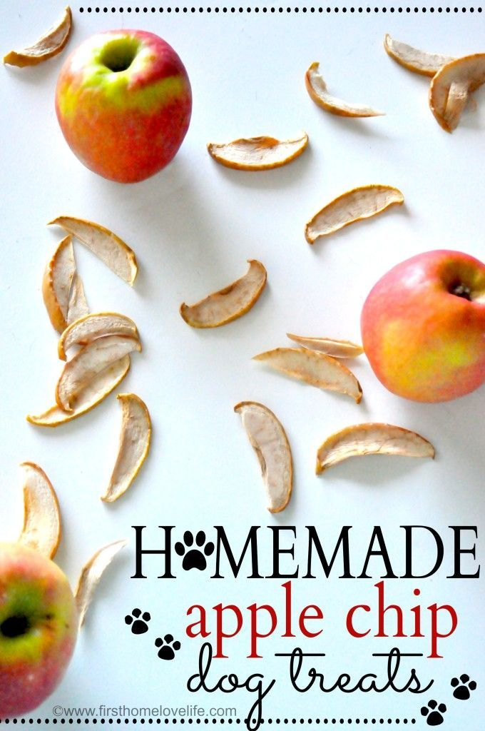 Homemade Apple Chip Dog Treats via First Home Love Life #pets #recipes #dogs