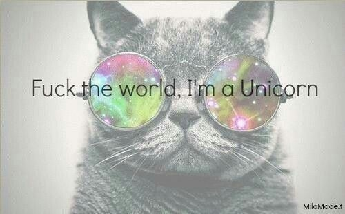 I'm a Unicorn Quote