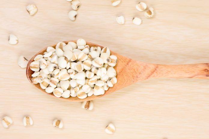 Rádi zkoušíte nové zdravé potraviny? Seznamte se slzovkou, prastarou bezlepkovou obilovinou, přezdívanou Perla východu. Vyniká úžasnými detoxikačními a léčivými účinky. Již staří Egypťané nebo Palestinci dobře věděli o úžasných vlastnostech této rostliny, známé také…