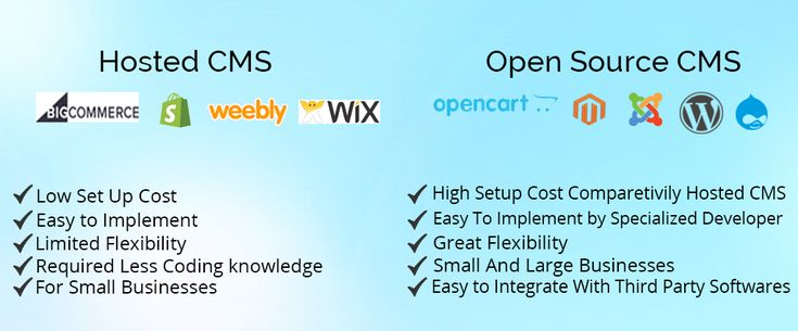 Difference Between Managed Ecommerce Platforms vs. Open Source CMS