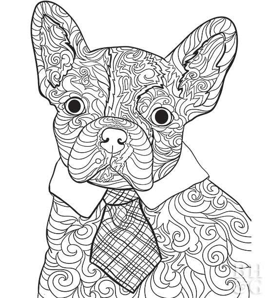 ausmalbilder bruder bulldog  aglhk