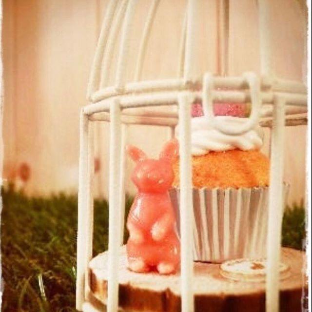 【mignon.sweets.forest】さんのInstagramをピンしています。 《* * カップケーキ・*:.。❁ * #ハンドメイド #handmade #粘土細工 #粘土 #フェイクスイーツ #スイーツ #Sweets #食べられないお菓子 #作品集  #カップケーキ #ストロベリー #鳥かご #樹脂粘土 #手作り #森 #うさぎ #rabbit #ナチュラル雑貨 #インテリア雑貨 #natural  #ノスタルジック》