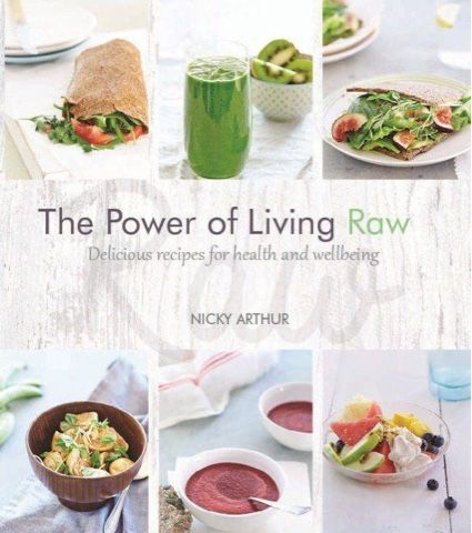 The Power of Living a Raw Food Lifestyle: FREE VITAMIX RAW VEGAN RECIPE
