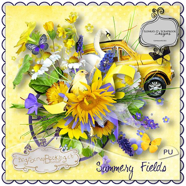 *** NEW ***  Summery Fields by Ilonkas Scrapbook Designs http://www.digiscrapbooking.ch/shop/index.php?main_page=product_info=22_188_id=11554