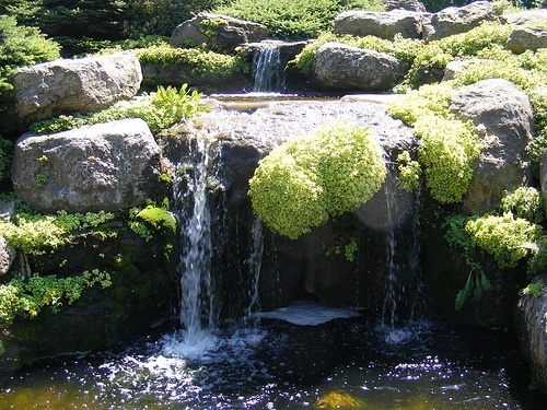 Olbrich gardens waterfall this cute little waterfall is at olbrich gardens in madison wisconsin for Olbrich botanical gardens hours