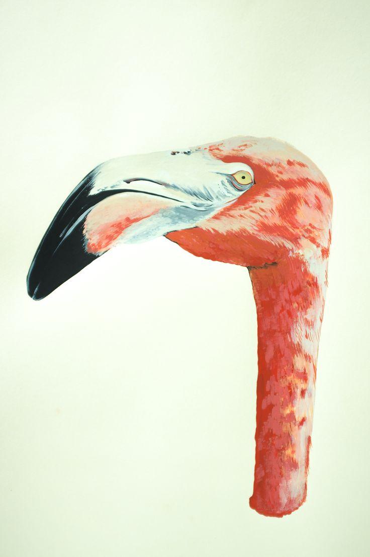 Flamingo, 2012