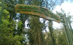 Parque Quebrada de Macul, Santiago de Chile