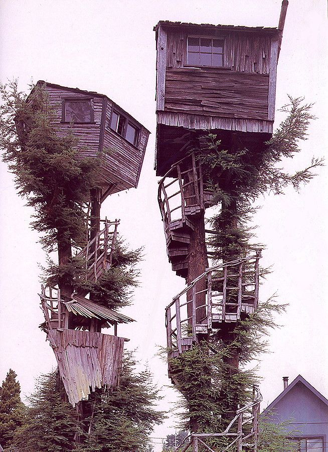 Two Tree Houses