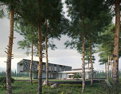 Luxury House|3D visualization