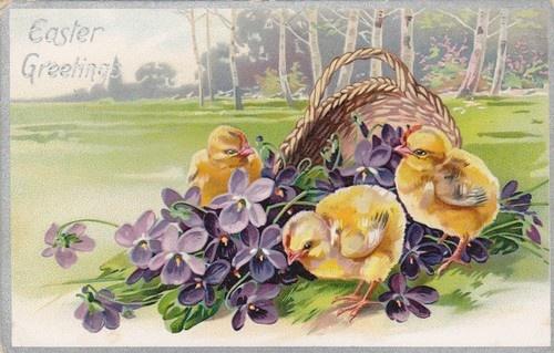 Tucks Easter Greetings Series 105 Pretty Artist Chick Holiday Postcard | eBay