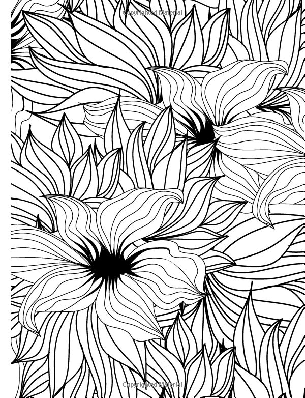 Amazon Really RELAXING Colouring Book 3 Botanicals In Bloom A Fun Printable Coloring PagesAdult