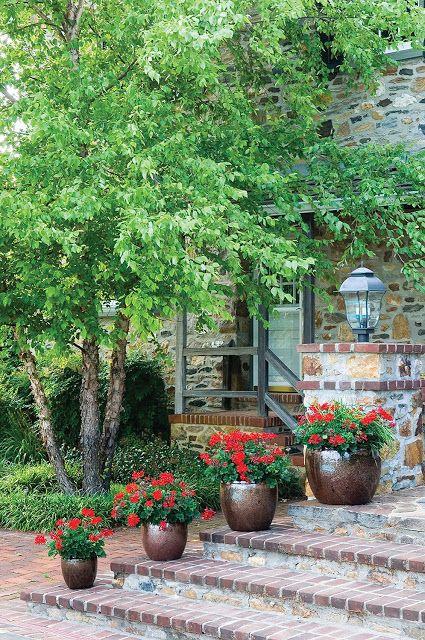 47 besten Garden Projects Bilder auf Pinterest - umgestaltung krautergarten dachterrasse