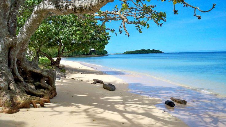 Beach   Koro Sun Resort