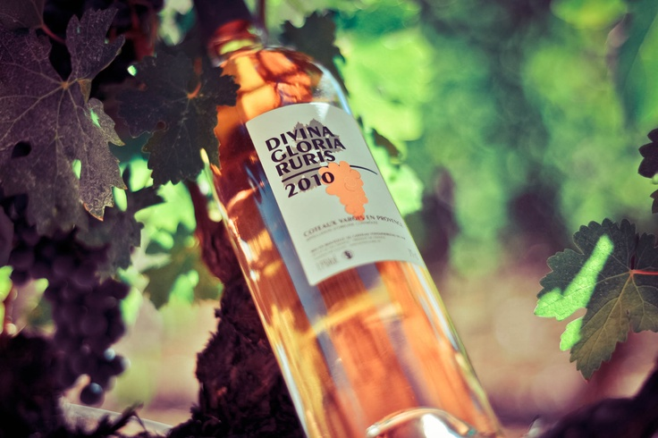 Typically French Pink Wine Chateau Fontainebleau in Provence  Vin Rosé Château Fontainebleau AOC Côteaux Varois  #Pink #wine  #rose #vin #Provence  ©Sebanado