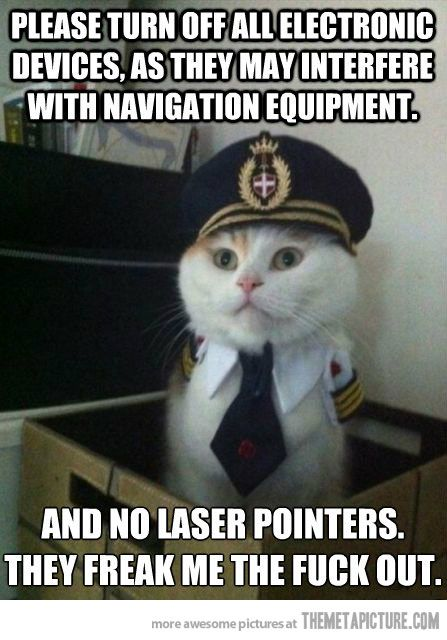 8e3b108f790ea6bef38f3f724f4b863d cats humor cat memes 41 best memes & gifs images on pinterest gifs, lol funny and 21,Laser Pointers Funny Airplane Meme