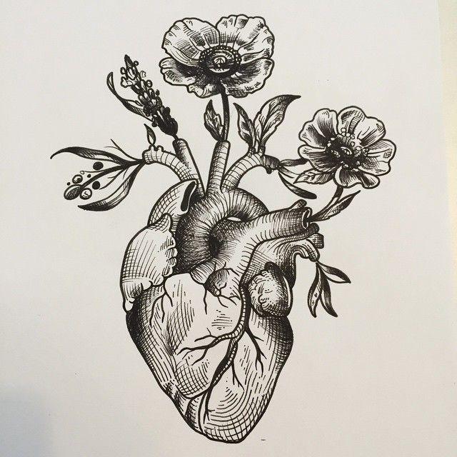 anatomical heart woodcut - Google Search
