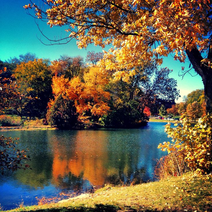 Lake LaVerne. Iowa State University. Ames, Iowa