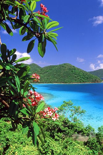 St. John, USVI. Truly a rare gem on the planet 75% of the island is national park. Thank you Mr. Rockefeller for this beautiful gift.